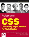 Professional CSS