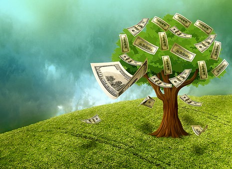 How to Build a Green Business