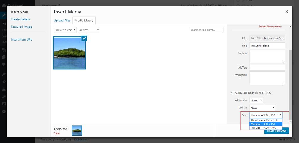 Image Size In WordPress